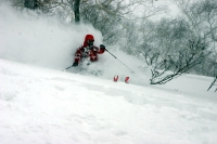 NOASC Niseko Backcountry Ski Lessons