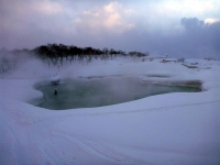 NOASC Niseko Private Snowshoeing Tour