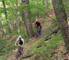 Niseko Mountain Biking