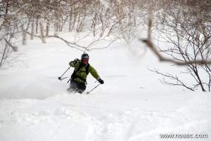 Niseko Backcountry Tour Photos