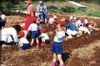 Digging Potatos - NOASC School Indoor Program