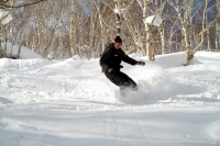 NOASC Niseko Snowboard Lesson Level 8